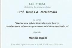 Certyfikat 20-21.03.2009
