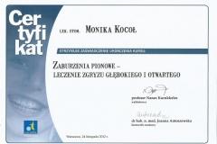 Certyfikat 24.11.2012